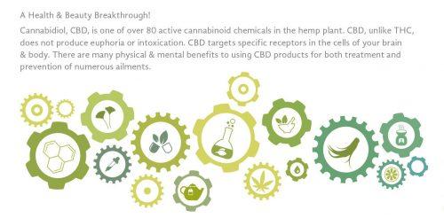 CBD-oil2
